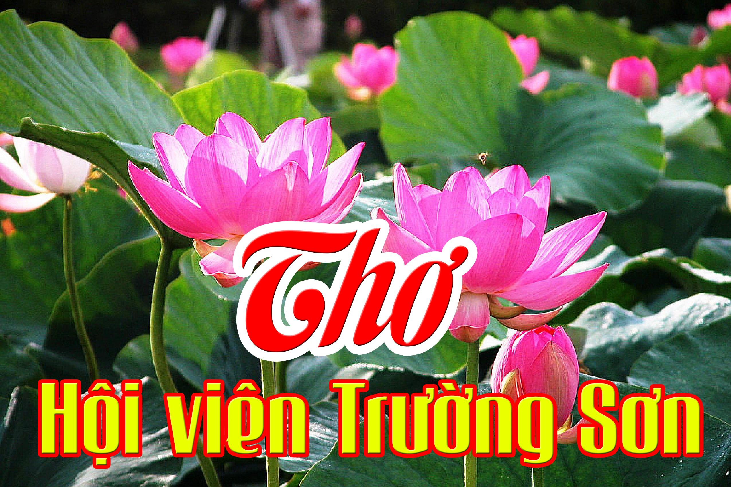 Chùm thơ của Hoàng Huy, Hội viên Hội VHNT Trường Sơn